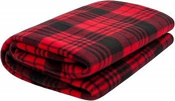 Sojoy Low Voltage Blanket For Vehicles review